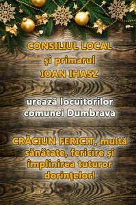 Lugoj Expres 16 Primaria Dumbrava