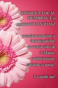 Lugoj Expres 10 DUMBRAVA