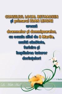 Lugoj Expres 4 bethausen (1)