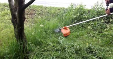 Lugoj Expres Se cosește iarba în cartierele Micro I și Micro III verzi spații se cosește iarba Primăria Municipiului Lugoj Micro III Micro I Lugoj echipe de lucru daune