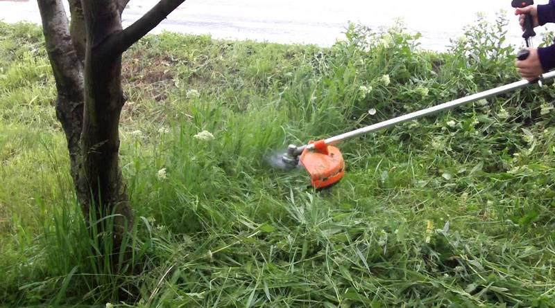 Lugoj Expres În cartierele din Lugoj continuă cosirea ierbii spații verzi se cosește iarba Primăria Municipiului Lugoj Lugoj echipe de lucru daune carierele din Lugoj