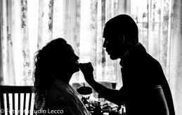 villa-calmia-galliate-lombardo-varese-matrimonio (1)