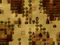 reCO1 Desert