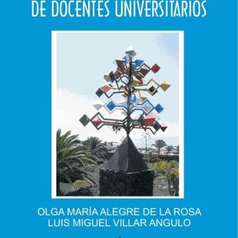 El programa formativo como criterio de calidad para determinar los objetivos y el curriculum en la docencia de la institución universitaria