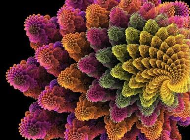 fractalflowers36