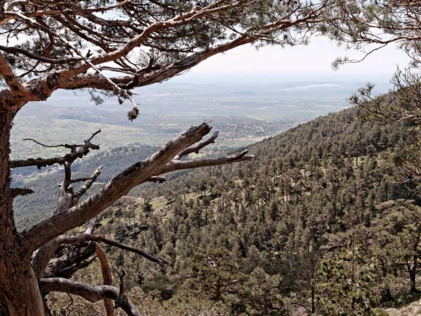 Vista del Valle de Fuenfría desde el camino de montaña de La Calle Alta en Cercedilla, Madrid. Fotografía de Luis F. Roncero.