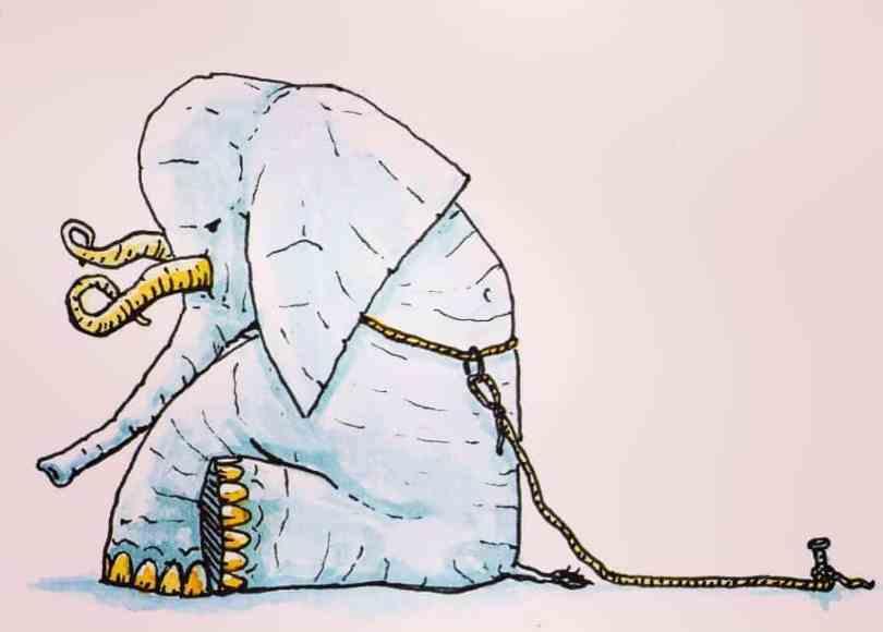 Porqué nos hundimos en el sufrimiento: La indefensión aprendida 1