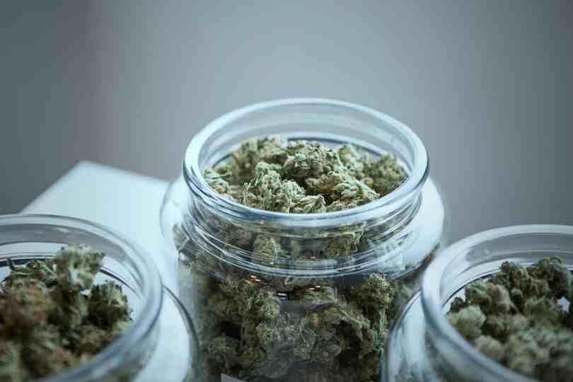 cannabis como dejar de fumar marihuana porros