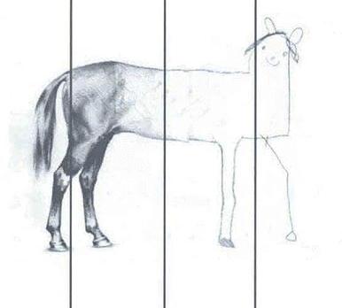 meme caballo la importancia de contratar un profesional