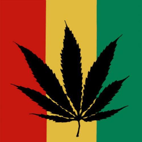 ▷ ¿Qué pasará si legalizamos la marihuana? 1