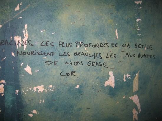 """""""Las raíces más profundas de mi idiotez alimentan las ramas más altas de mi genio. Cor"""". (Bruselas)"""