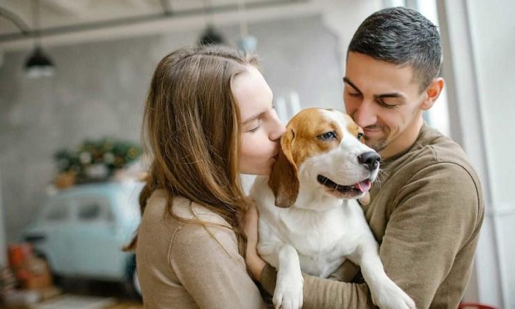 Convivir con mascotas protege el cerebro?