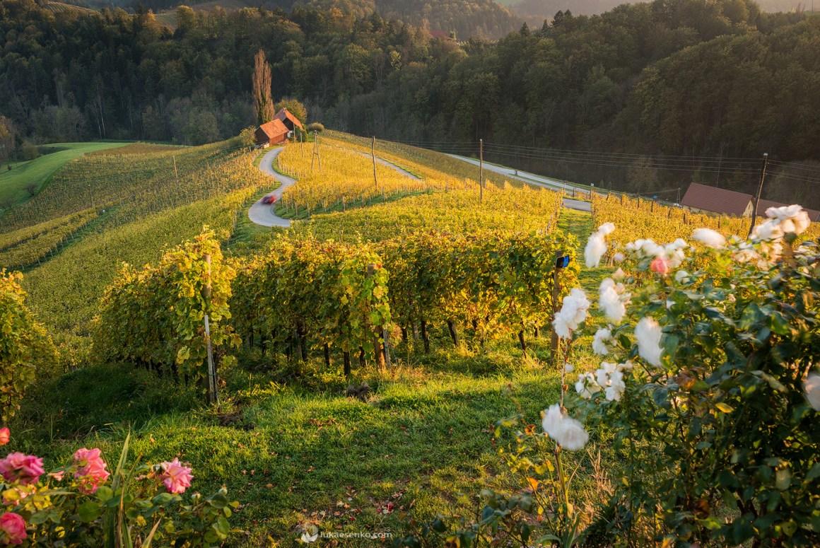 Heart road Slovenia