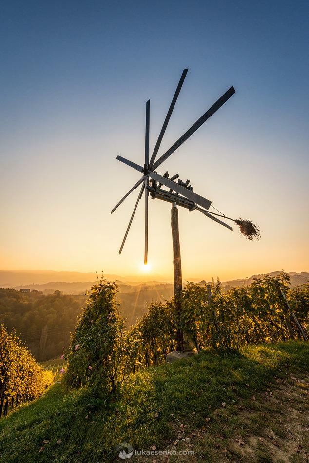 Vineyards at Špičnik