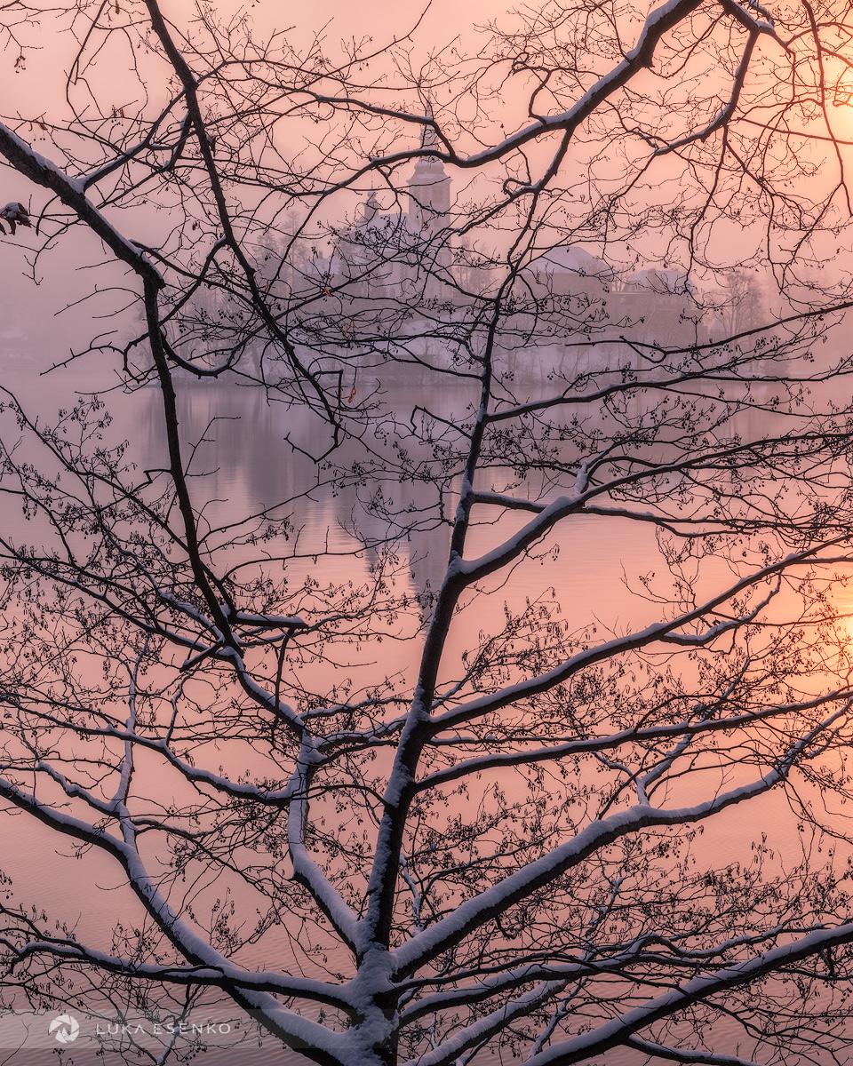 Lake Bled on winter morning