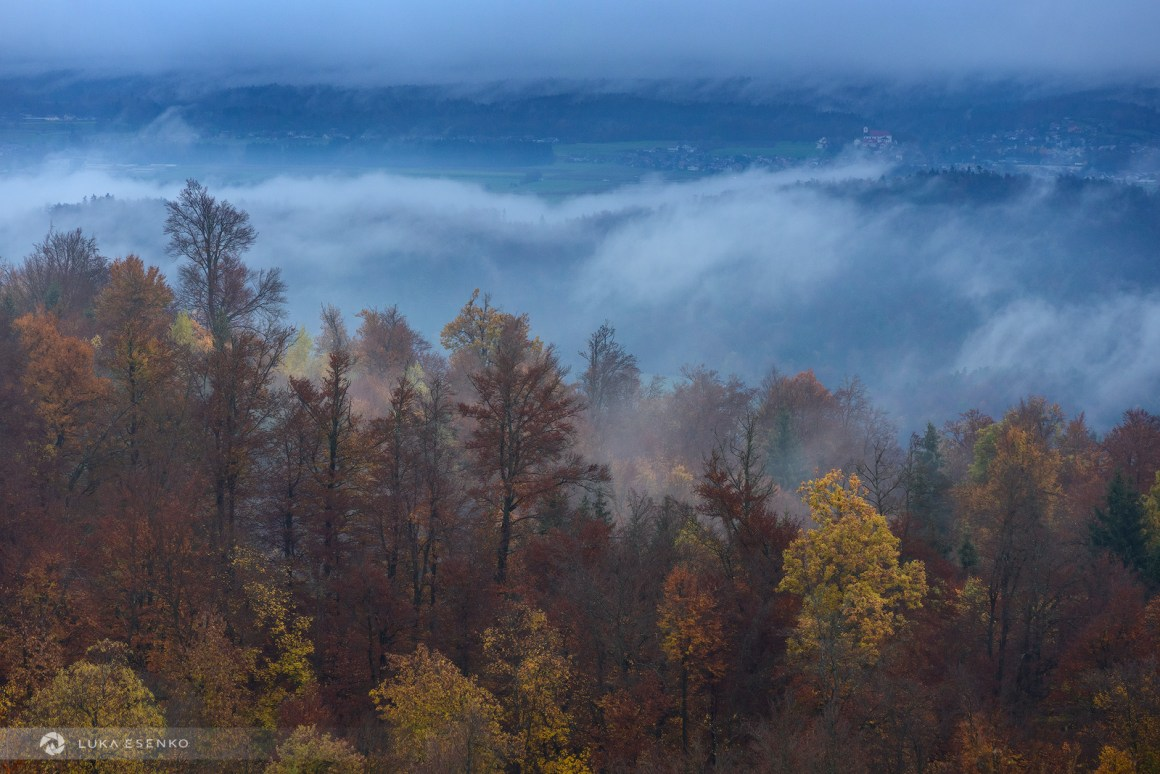 Autumn in Slovenia - forest and mists