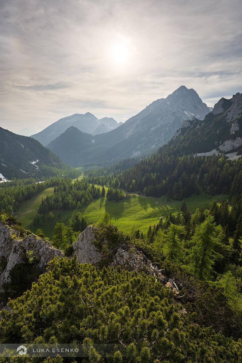 Zelenica meadows in Karavanke Alps, Slovenia