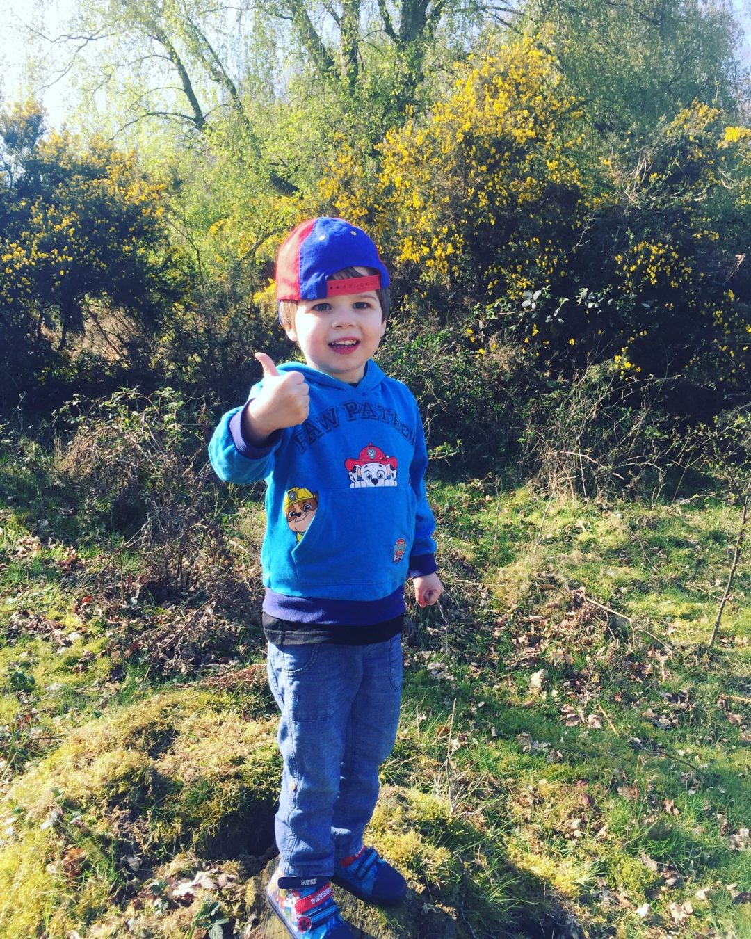 Exploring Caeser's Camp in Hampshire/Surrey with a 3 year old at http://lukeosaurusandme.co.uk