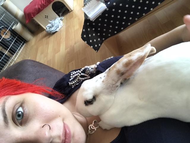 About Huxley the house rabbit at https://lukeosaurusandme.co.uk