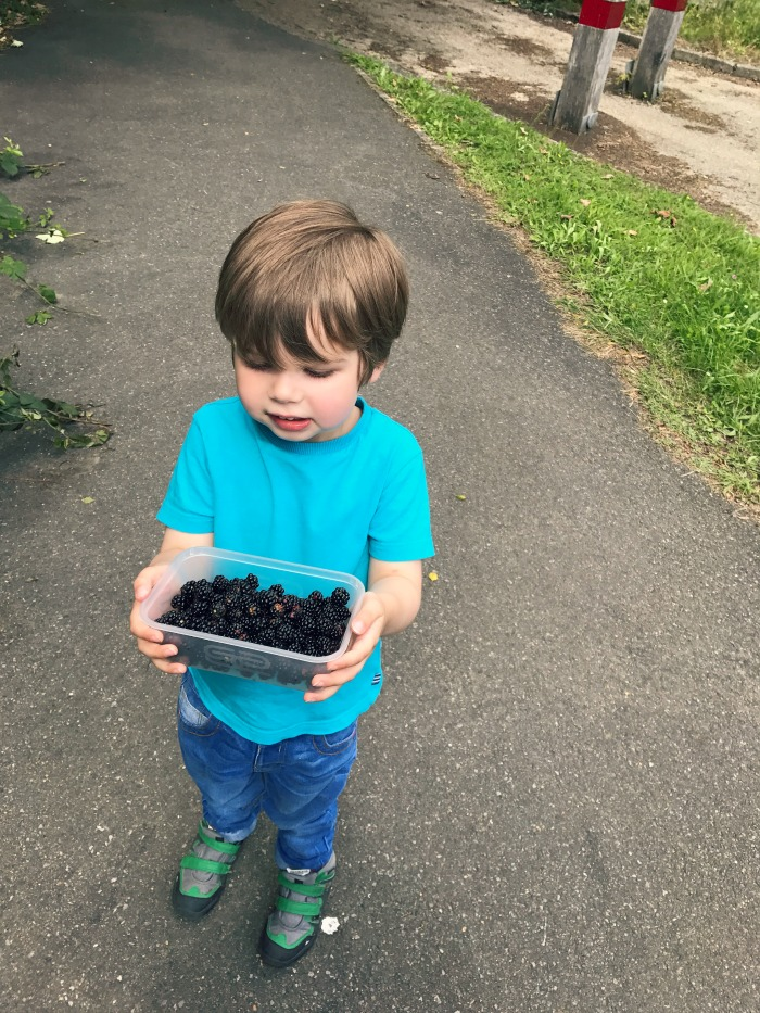 Picking blackberries and making apple and blackberry crumble. Perfect summer holiday activity from http://lukeosaurusandme.co.uk