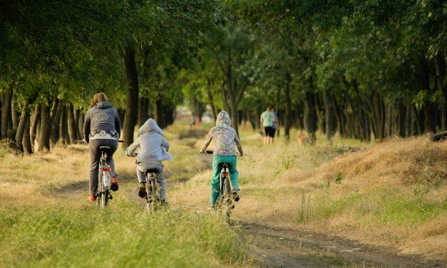 A Guide To Cycling As A Family