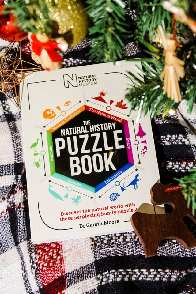 Natural History Puzzle Book underneath a Christmas tree