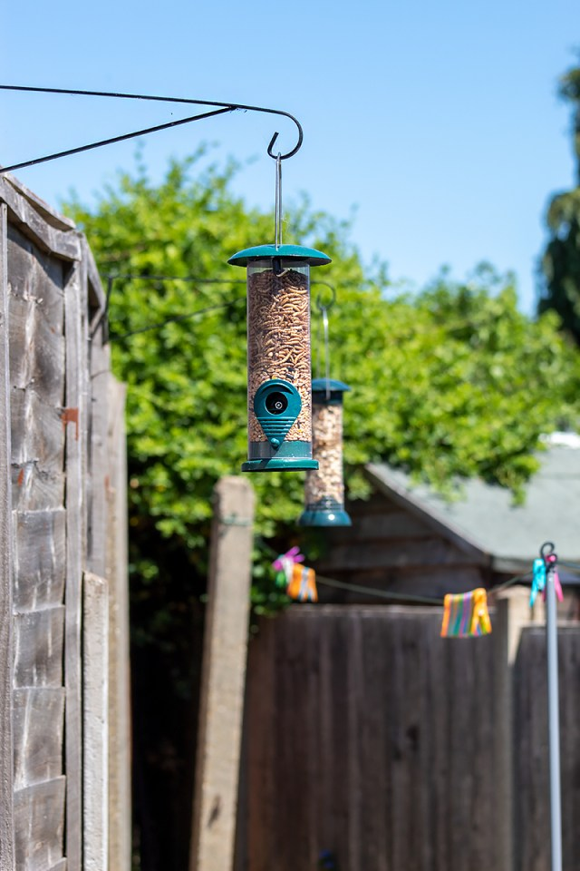 A bird feeder filled to the top and another one in the background. For a post on making your rented garden look beautiful.
