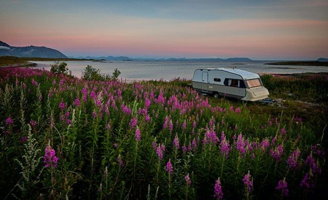 Purple flowers in the foreground and a motorhome in front of the sea for a blog post about camping now that the campsites are reopening in the UK