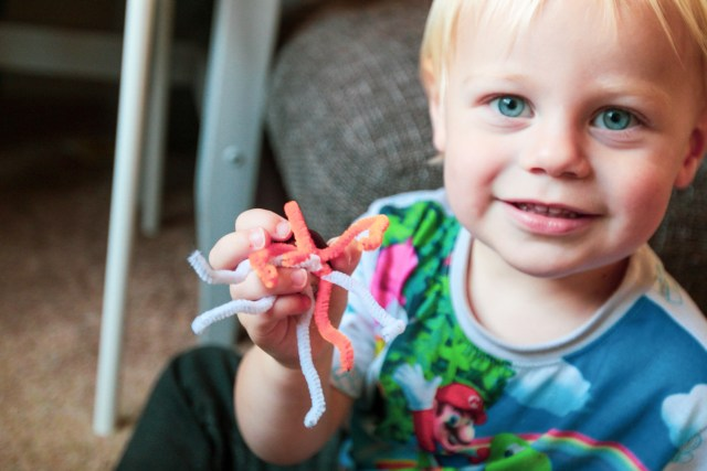 boy holding a conker with orange and white pipe cleaners stuck to the bottom - for a blog post about canker spider crafts.