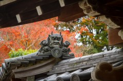 Temple roof decoration and autumn colours, Nara Park