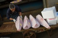 Tuna ready to be shipped, Tsukiji Fish Market