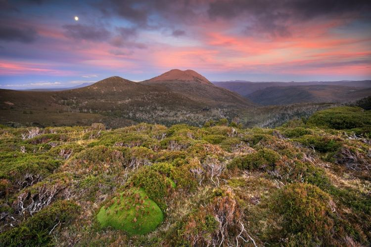 Looking towards Mount Emmett on the first day of the Overland Track