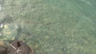 Wunderbar klares und nicht zu kaltes Wasser fuellt den Atlin Lake.