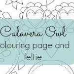 Calavera Owl Colouring page and feltie