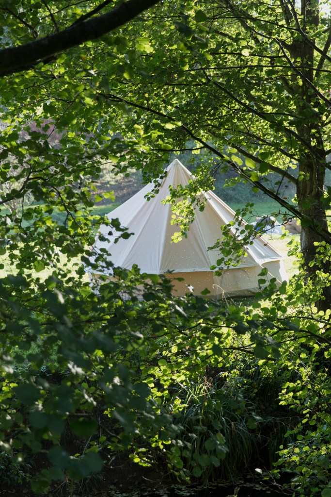 garden-glamping in lockdown