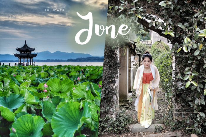 杭州日記|用行動力開啟六月:西湖夏荷之美、穿越千年體驗劇本殺、開始尋找適合的工作