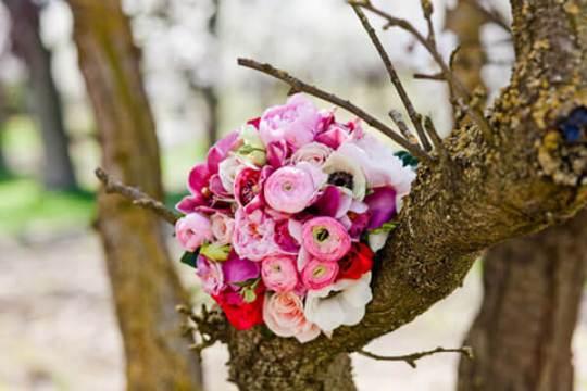 самые разнообразные оттенки розового
