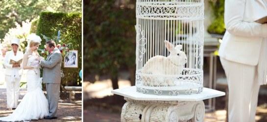 Белый кролик на свадьбе