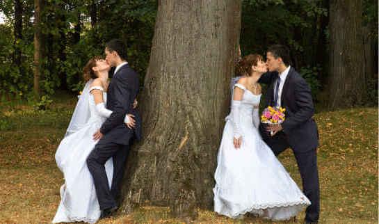 Дерево олицетворяет брак через пять лет