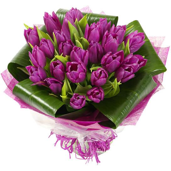 тюльпановый сюрприз