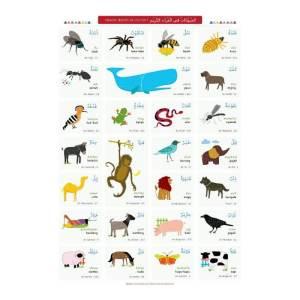poster hewan untuk anak bahasa inggris, arab, indonesia