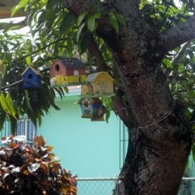 Yard Bird Houses