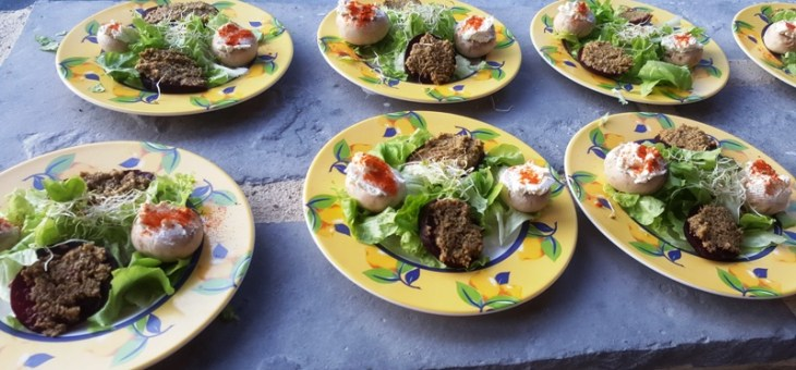 Toasts de betterave à la tapenade verte et champignons au fromage frais au paprika