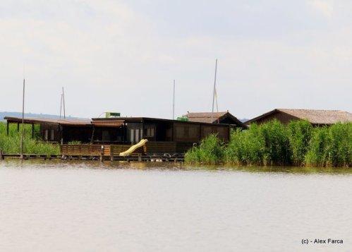 Morbisch am See, case pe lac