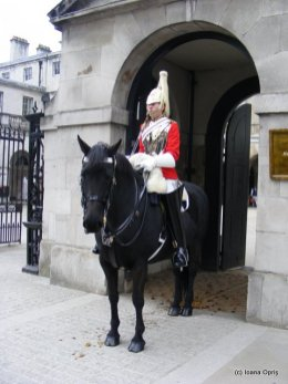 Garzile calare de la Whitehall