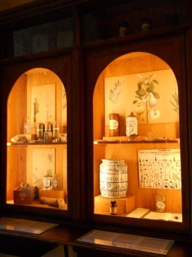 05_Muzeul farmaciei