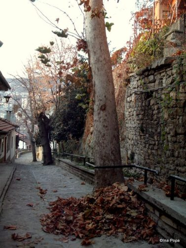 Veliko Tarnovo - pe stradute