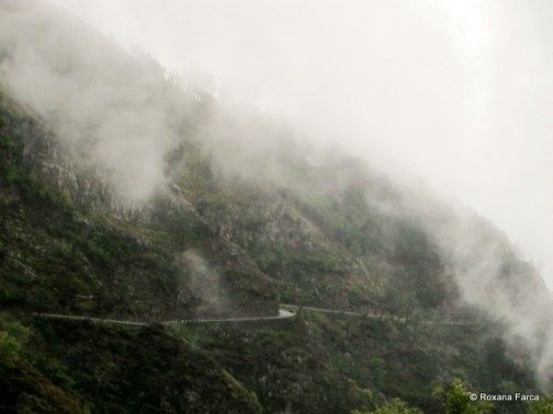 Madeira_2688