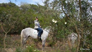 Azambuja - Coudelaria Henrique Abecasis 15