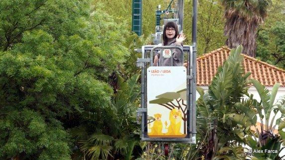 Lisabona Zoo 01